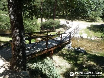 Las Pesquerías Reales - Senderismo Segovia (Ruta de las Pesquerías Reales); gredos senderismo